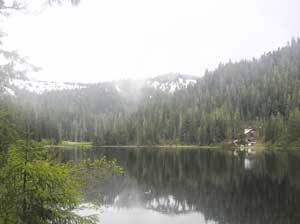 Mist at Deer Lake