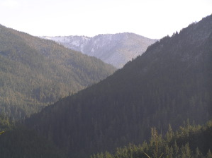 Elwha Valley