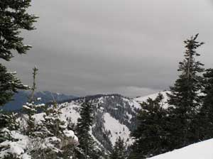 Hurricane Ridge View 2