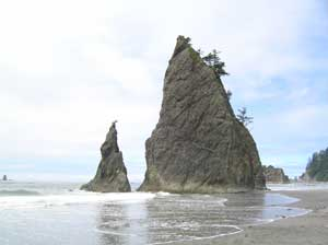 Sea Stack at Rialto Beach
