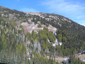 No Snow on the Switchback Trail