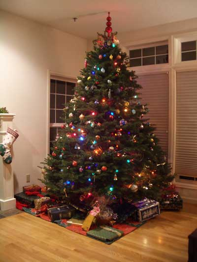The Kaleberg Chrstmas Tree