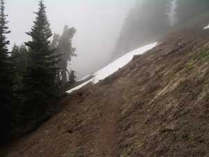 Snow on the Klahane Ridge Trail