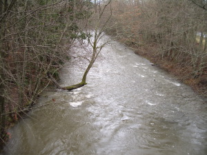 Morse Creek with lots of water in it