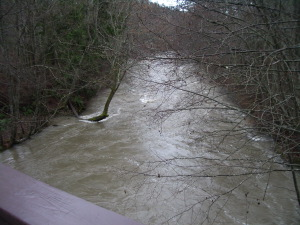 Even higher water at Morse Creek
